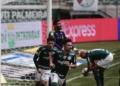 Palmeiras e América-MG se enfrentaram em São Paulo pelo Brasileirão Assaí Créditos: Ettore Chiereguini/AGIF