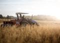 Mesmo em um ano ano especialmente desafiador, com isolamento, paralisações e lockdowns, o agro apresentou crescimento recorde