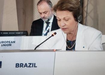 Foto: Divulgação MAPA.