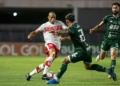 CRB-AL e Guarani se enfrentam pela 30ª rodada da Série B Créditos: Celio Junior/AGIF